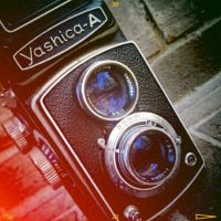 Yashica Leak by OVEclipse