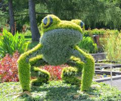 Mosaic Living Sculpture - Tree Frog by Kitteh-Pawz