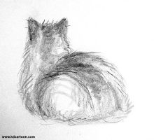 Our Cat Sketch 6 by kdonline