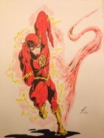 The Flash by coyote117