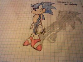 Sonic The Hedgehog by Junka-speed