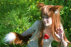 Spice and Wolf by Noloty