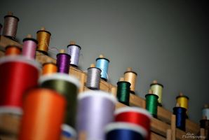 Pick Your Color by DhxFoto