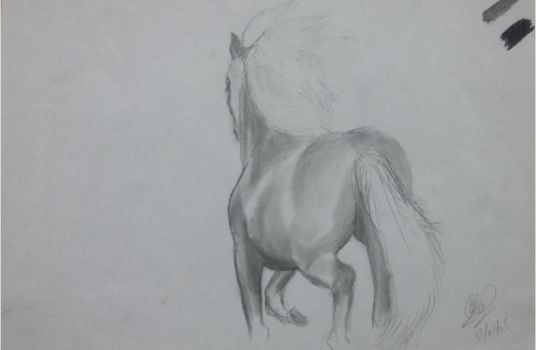 Horse Sketch by Qaseem3003