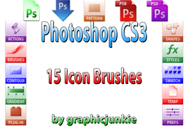 Photoshop CS3 Icon Brushes by graphicjunkie