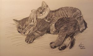 mandatory daily cat sketch 686 by nosoart