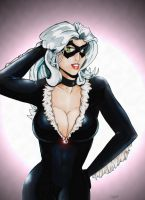 Black Cat - Remastered by StingRoll