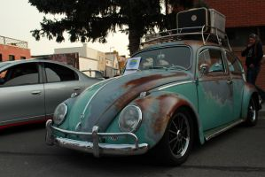 Ratty Beetle by KyleAndTheClassics
