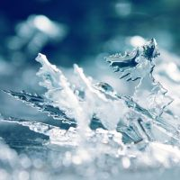 Ice Crystals by Leavylaulada