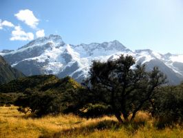 Mount Cook I by iram