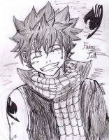 Natsu's Smile by 52mew