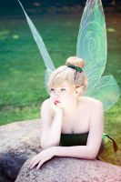 Tinkerbell - Why can't I go to the mainland? by Gwan-chan