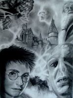 Harry Potter Mix by pbird12