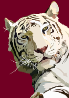 Tiger looking - vector by elviraNL