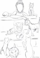 Mad Cat Lady, Is It Safe? by SkullsCrystal