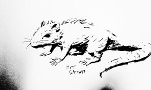 Ink Brush Rat by Faullyn