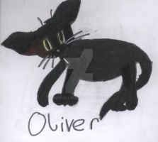 Oliver 2 by Sunfall16