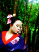 Beauty of a Geisha by milesgore