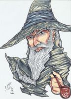 Gandalf The Grey by E-M-R