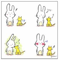 le petit lapin by bunnies