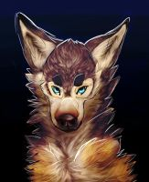 Icy Stare by WEHRWOOF