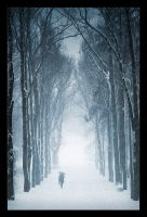 Chilly Alley by antiparticle