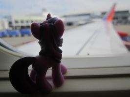 Leaving Seattle by V0JELLY