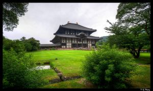 Todaiji Temple, Nara, Japan by Kaboose-18