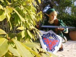 Link Twilight Princess-WIP by mugen-chan