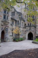 Yale University Stock 45 by FairieGoodMother