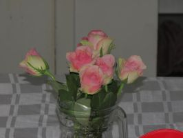 Roses are pink... by Lunan0n