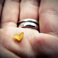 In the palm of my hand. by Littography