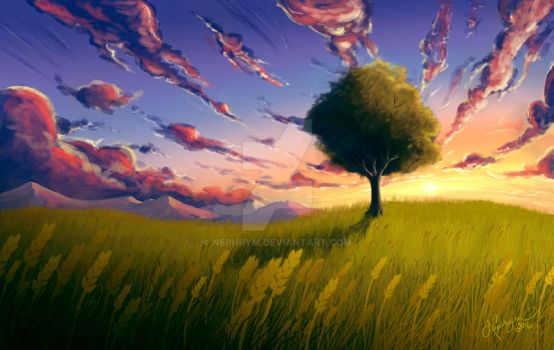 Lone tree sunset by Nephrym