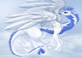 Snow Dragon by werecarrot