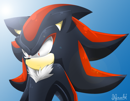 Shadow :U by Kyuubi83256