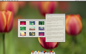 Tulips - Mac for Linux Pack by Laskdn