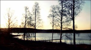 Morning In Archipelago May 15st  by eskile