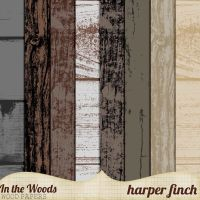 In the Woods Wood Papers by Harper Finch by harperfinch