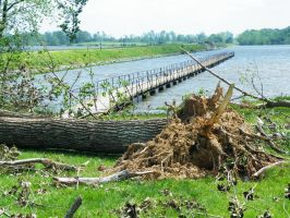 Storm Damage May 2009 05 by FlashBazbo56