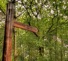 Sign to Wollaton Park by cathy001