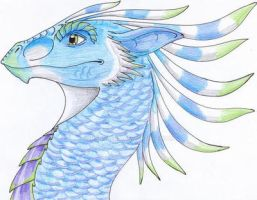 Blue Featherhead by CrazyCrocuta