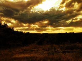 Golden Sky by TheGerm84