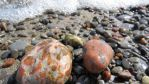 Speckled Rocks by tricia-s