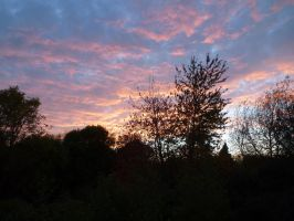Saturday Evening from Bedroom Window 1 by SrTw