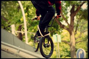 .BMX by iGnezz