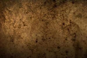 A. Stanton Texture Stock by redwolf518stock