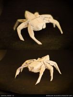 JumpingSpider1.0 by fireantz83