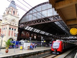 Various EMUs at Luz Station by Alexandre-ue