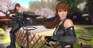 Xnalara - Kasumi - I'm a Fighter Pose by SilverMoonCrystal