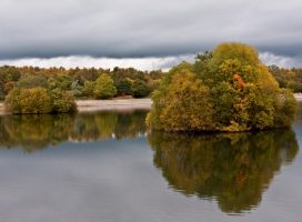 Early Autumn II by DundeePhotographics